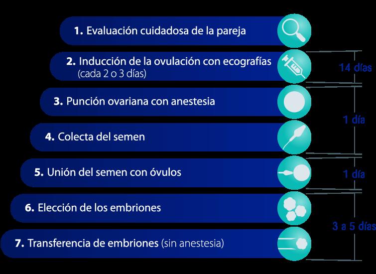 FIV - Fertilização in vitro